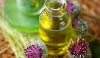 Репейное масло для бороды: описание, польза, лучшие рецепты
