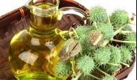 Касторовое масло для роста бровей - описание, способы применения