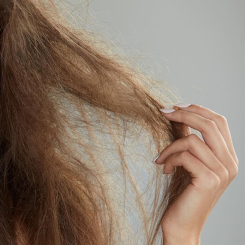 внешний вид ломких волос