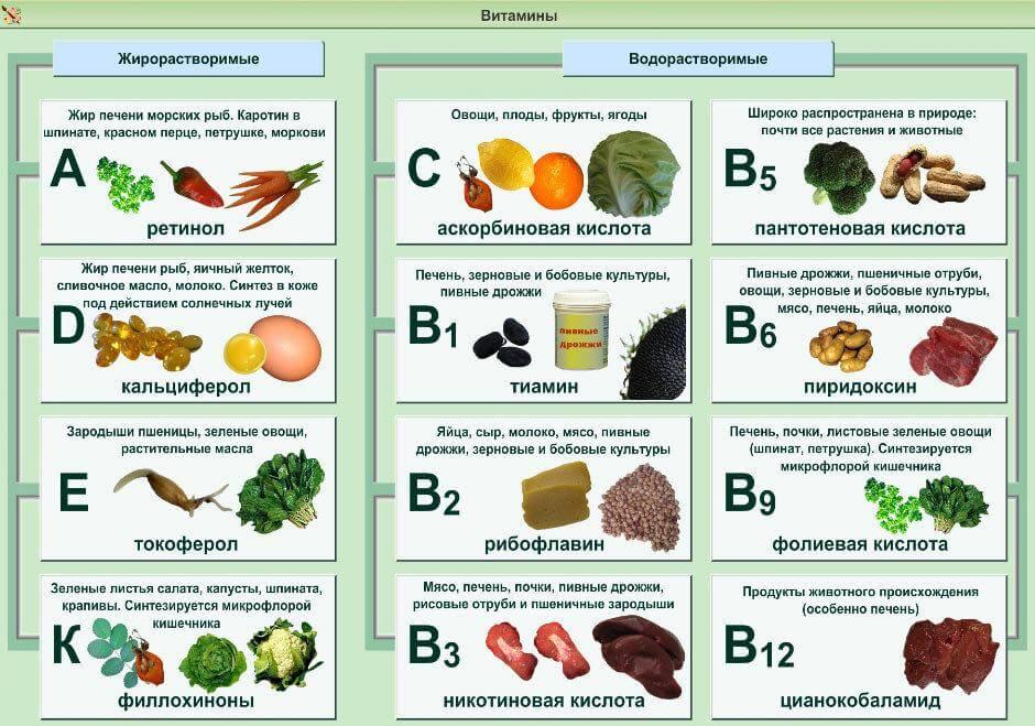 таблица продуктов с содержанием витаминов