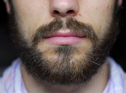 ипотечные продукты что делать когда отпускаешь бороду чудовище: