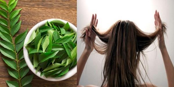Как лечит выпадение волос в домашних условиях